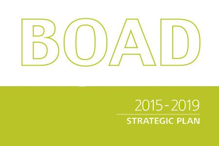strategic-plan-2015
